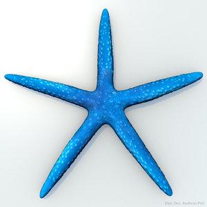3ds blue starfish