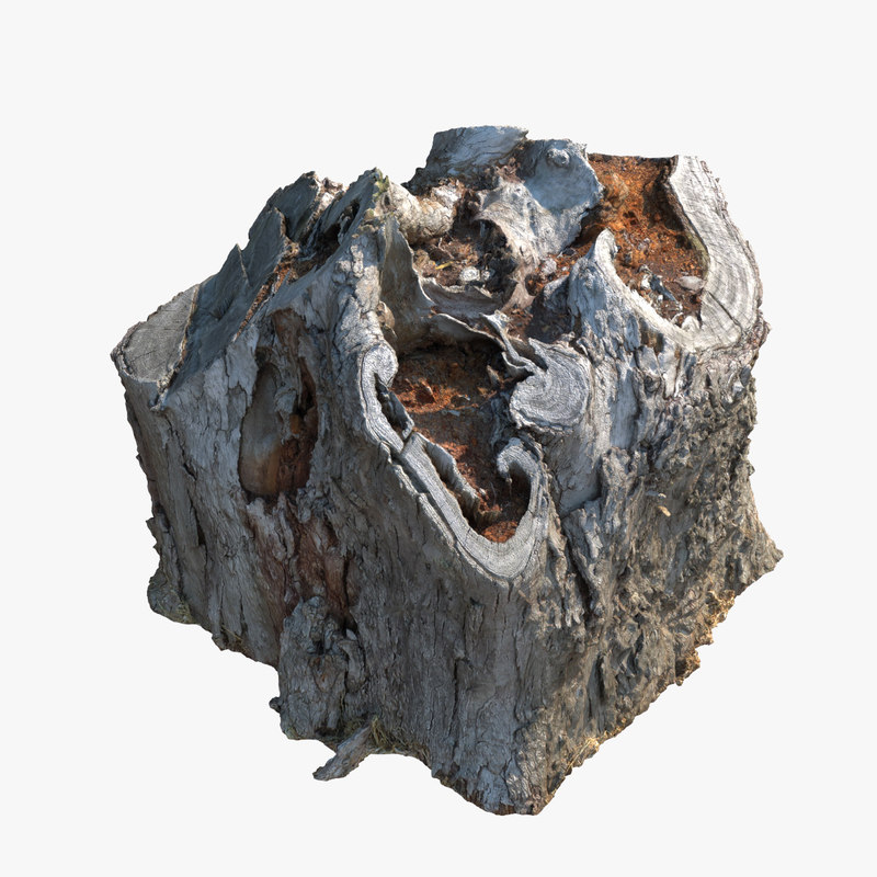 3d max scanned dead tree stump