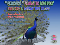 3ds max peacock rigged animation