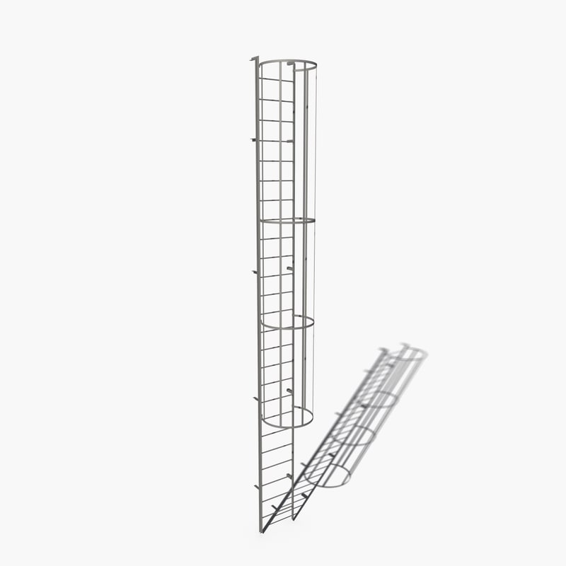access ladder 3d max