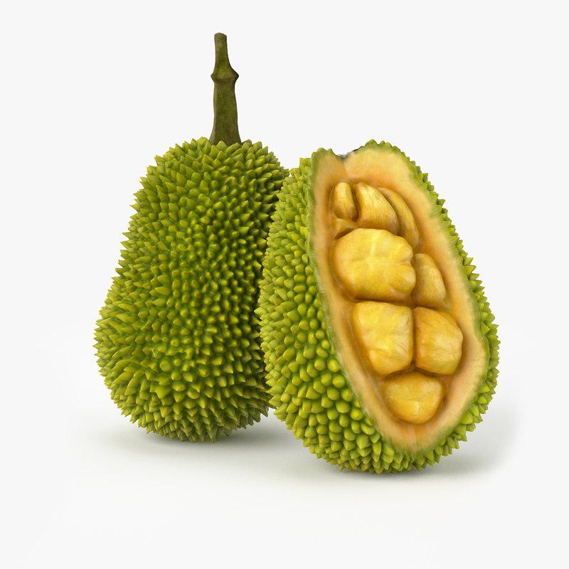 3d model realistic jackfruit real fruit