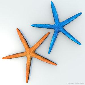 blue starfish orange 3d c4d