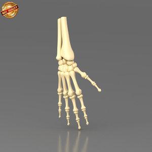 anatomy science 3d obj