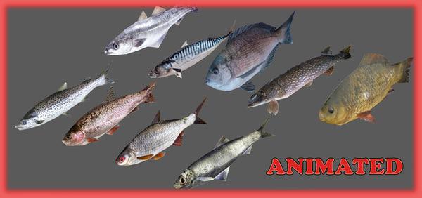 maya fish animations