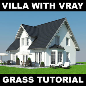 max house grass realistic