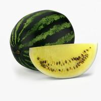 x realistic watermelon