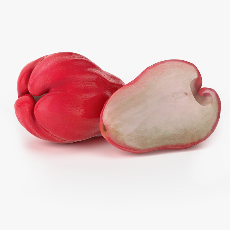 3d model of realistic chompu fruit real