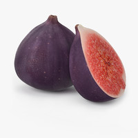 realistic figs fruit real max
