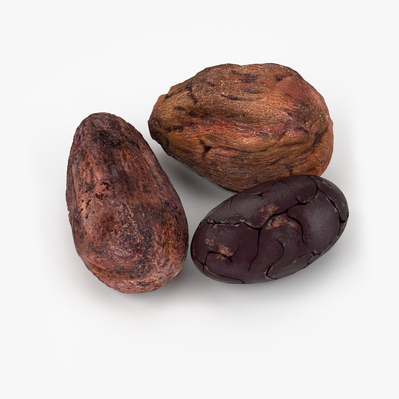3d realistic cocoa beans