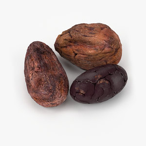 3d realistic cocoa beans