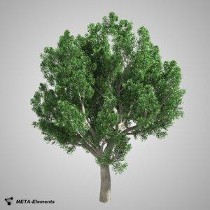 free obj mode broadleaf tree