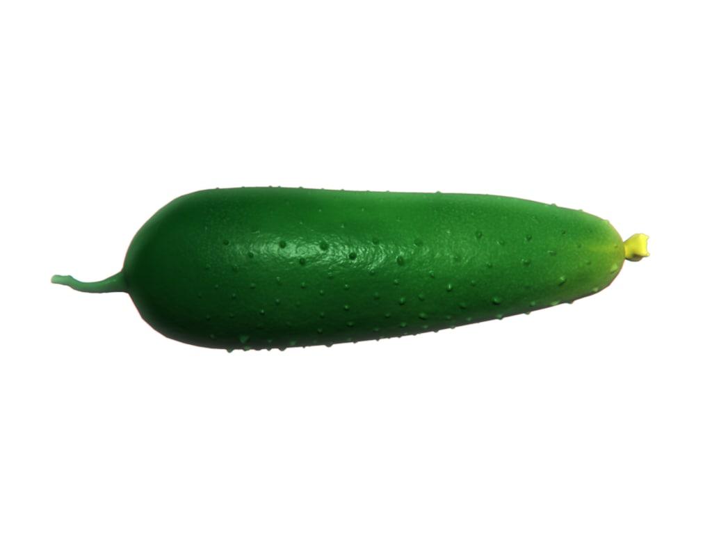3d model realistic cucumber