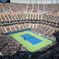 arthur ashe stadium open 3d max