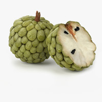 realistic anona fruit real 3d model