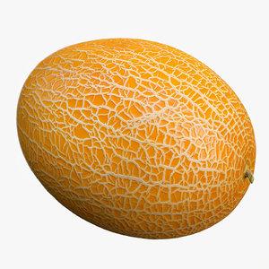 cantaloupe melon 3d obj