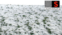 3d grass snow scanned model
