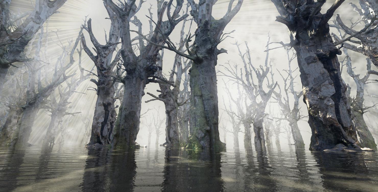 forest obj