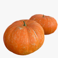 Pumpkin_3 Big High And Low Poly Scaned