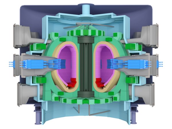 tokamak fusion reactor 3d model