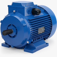 Stationary Electric Motor