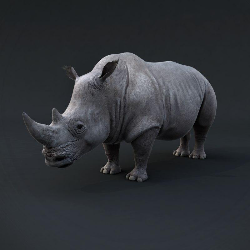 realistic rhino render 3d max