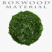 Boxwood Blender Material