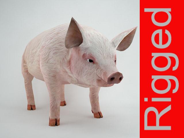 pig rigged 3d model