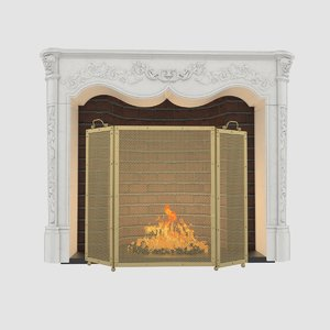 max fireplace screen