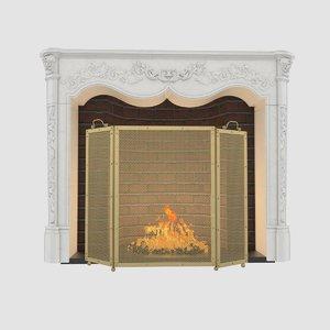 max fireplace screen