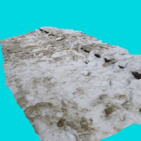 3d model walk path snow