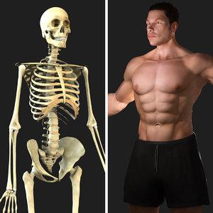 rigged skeleton male combo 3d model