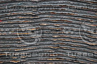 Fabric_Texture_0112