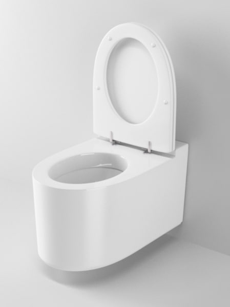 3d ideal standard moments toilet