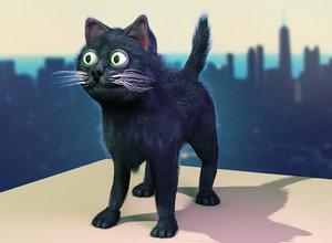 street cat max