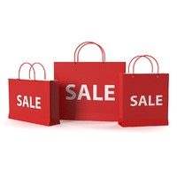 Sale Bags Set of 3