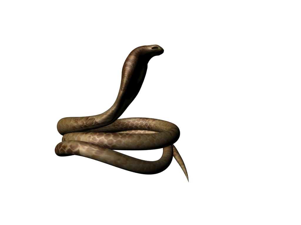 snake obj