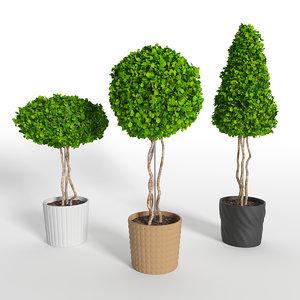 3d 3 tree model