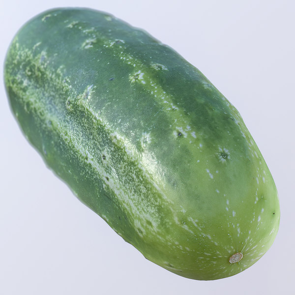 3d cucumber photorealistic scaned model