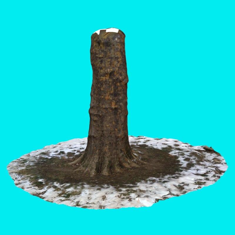max tree trunk 9