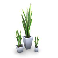 Potted Plants Bundle 3