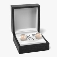 earrings box 3d model