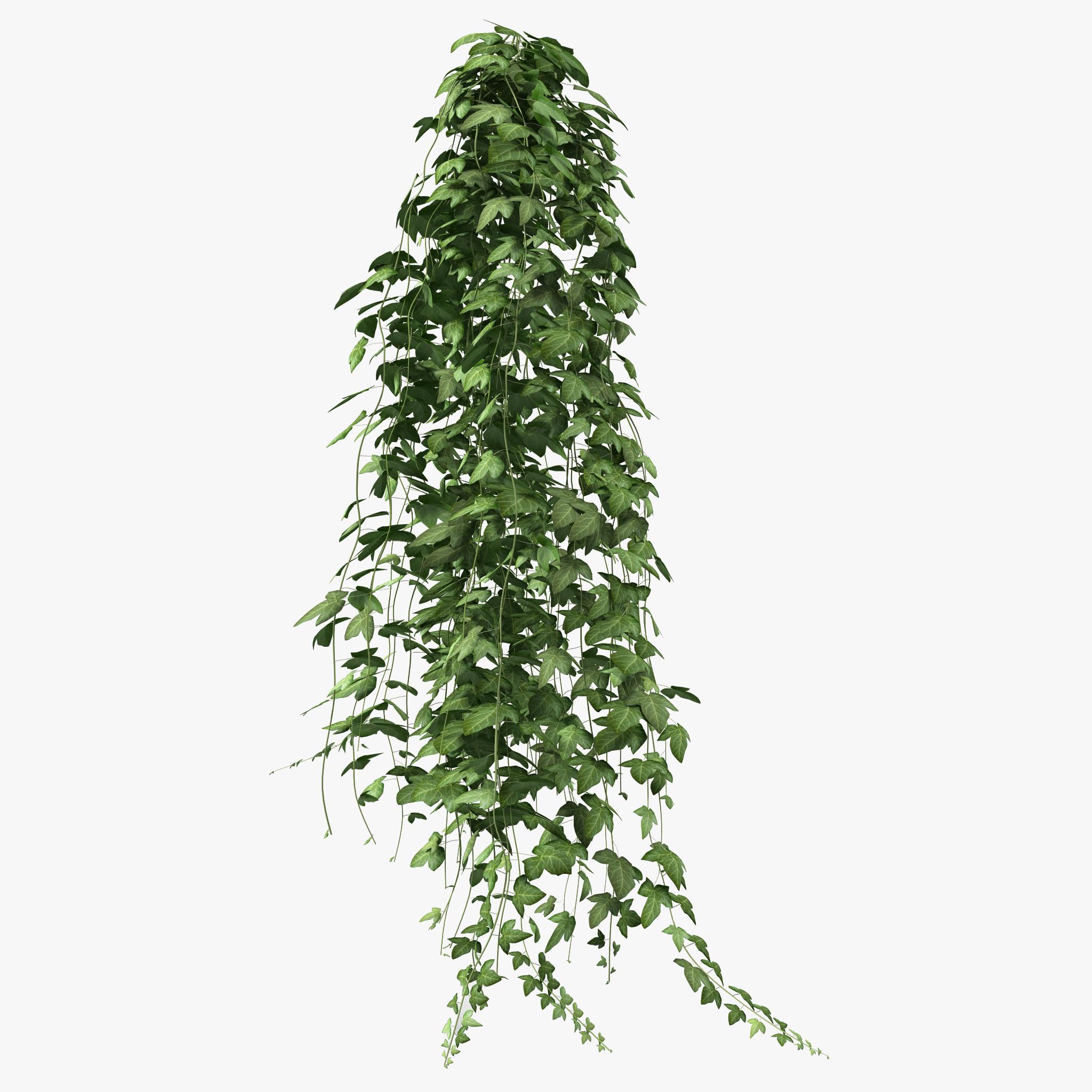 ivy garden 3d 3ds