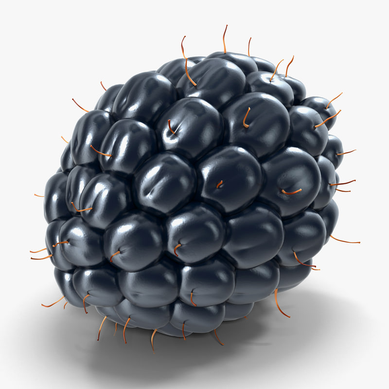 dewberry berry 3d model