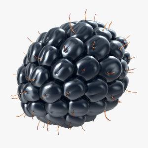 dewberry berry 3d model