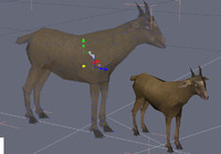 3d goat video games model