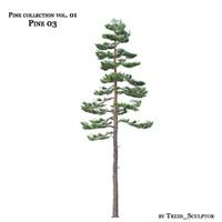 3ds max pine-tree tree