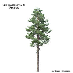 3d pine-tree tree