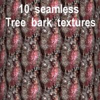 Tree Bark Collection 4