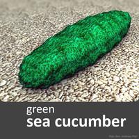 sea cucumber 3d model