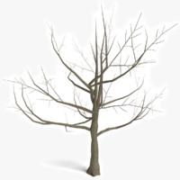 dead tree 3d obj